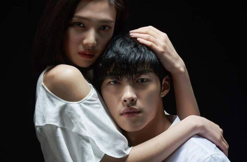 Joy et Woo Do Hwan dans The Great Seducer (Tempted)