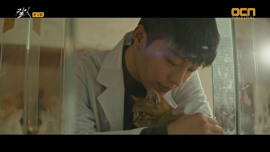Kim Soo Hyun's dog in Kill It