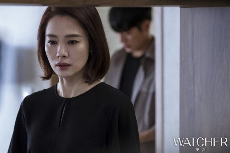 Kim Hyun Joo (Watcher)