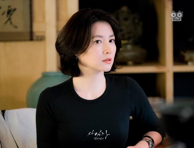 Lee Young Ae (Saimdang)